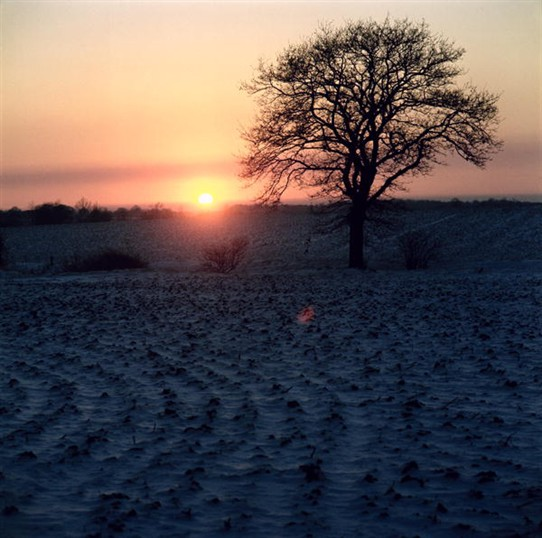 Photo:Hockley winter sunset