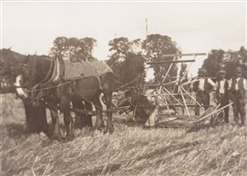 Photo: Illustrative image for the 'Paglesham - Farming the Land and the Water' page